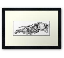 Woodcut Horse Skull Framed Print