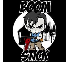 Boom Stick Photographic Print