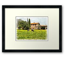 Farm and grazing cows Framed Print