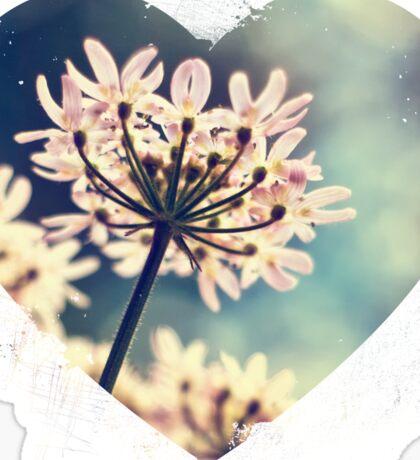 Queen Annes Lace flowers Sticker