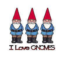 I Love Gnomes: Cute Hand Drawn Gnomes Photographic Print