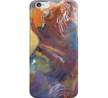 Sea Lion Seal Colorful Oil Painting iPhone Case/Skin