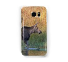 Maine Moose in the water Samsung Galaxy Case/Skin