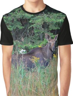 Moose in the meadow Graphic T-Shirt