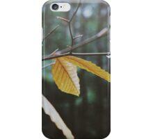Last of Autumn iPhone Case/Skin