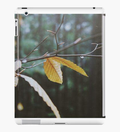 Last of Autumn iPad Case/Skin