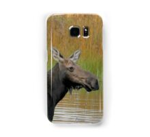 Maine Moose at dusk Samsung Galaxy Case/Skin