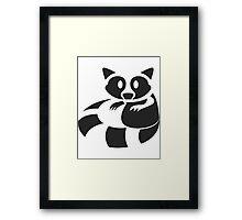 Raccoon Been Caught Framed Print