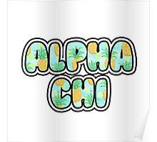 Alpha Chi Poster
