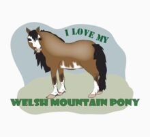 I love my Welsh Mountain Pony by Diana-Lee Saville