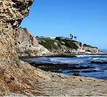 Pismo Beach by Judy Vincent