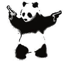 Cool panda Photographic Print