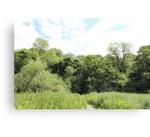 Beauty in nature - Dibbinsdale Nature Reserve 4 Canvas Print