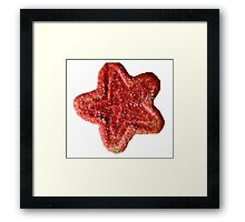 Christmas Cookie 3 Framed Print
