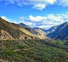 """San Gabriel Mountains, Angeles National Forest"" by Glenn McCarthy"