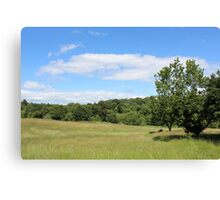 Beauty in nature - Dibbinsdale Nature Reserve 9 Canvas Print