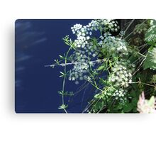 Beauty in nature - Dibbinsdale Nature Reserve 10 Canvas Print