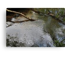 Beauty in nature - Dibbinsdale Nature Reserve 11 Canvas Print