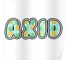 AXID Poster