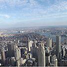 Aerial View, Lower Manhattan, Brooklyn Bridge, Manhattan Bridge, One World Observatory, World Trade Center Observation Deck, Lower Manhattan, New York City by lenspiro