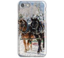 Winter's Wonderland iPhone Case/Skin