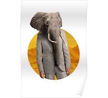 Sir Elephant Poster