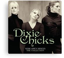 Dixie Chicks Wide Open Space by amdya Canvas Print