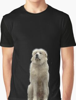 The Great Pyrenees mountain dog Graphic T-Shirt