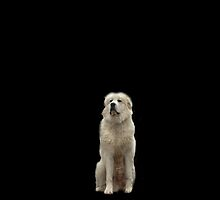 The Great Pyrenees mountain dog by VisionQuestArts