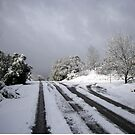 Let It Snow by Laurie Puglia