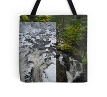 Winter vs Summer - Falls of Clyde Tote Bag