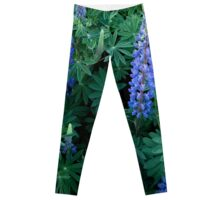Love of Lupins _ Squared Leggings