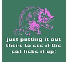 The Cat Licks It Photographic Print