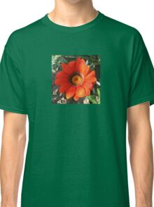 Close Up of a Beautiful Terracotta Gazania Flower Classic T-Shirt