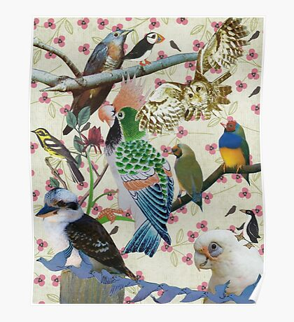 Pretty Birdies Poster
