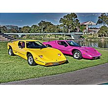 Yellow and Magenta Purvis Eurekas Photographic Print