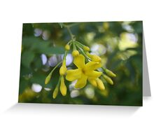 Close Up Of Carolina Jasmine Greeting Card