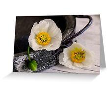 White Poppy Greeting Card