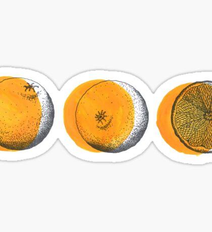 shifty orange  Sticker