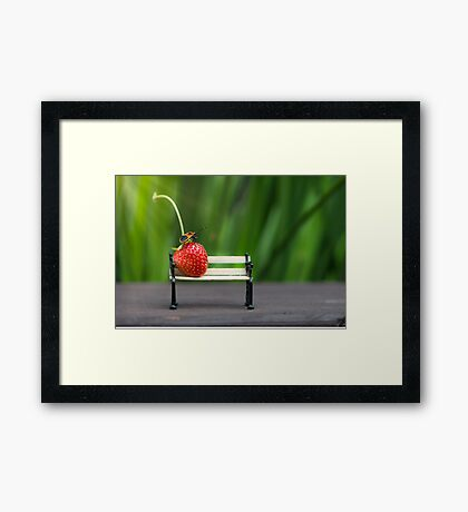 Small world ( strawberry and bug ) Framed Print