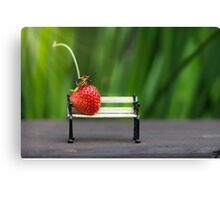 Small world ( strawberry and bug ) Canvas Print