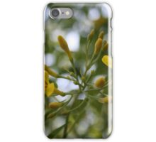 Shaded Carolina Jessamine iPhone Case/Skin