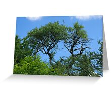 Old lonely tree  Greeting Card