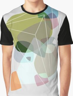 Graphic 119 Graphic T-Shirt