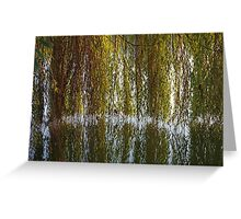 Curtains On The Water Greeting Card
