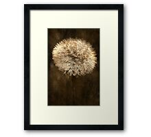 Gold Spun Framed Print