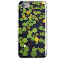 Pond of lilies iPhone Case/Skin