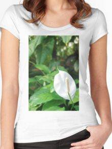 White Sails Women's Fitted Scoop T-Shirt