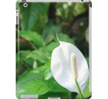 White Sails iPad Case/Skin