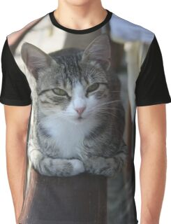 Cute Tabby Cat - Sitting On The Fence Graphic T-Shirt